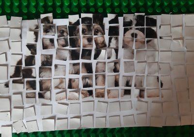 Mozaiki, 4.a